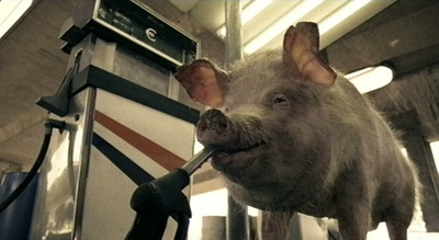 Citroën-Werbung: Ein weiteres Schwein in interessanter Perspektive