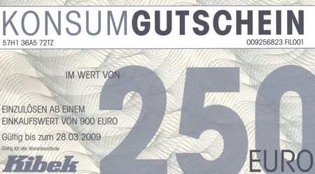 Konsumgutschein im Wert von 250 Euro - Einzulösen ab einem Einkaufswert von 900 Euro - Gültig bis zum 28. 03. 2009