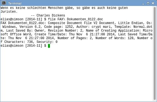 Screenshot meines Terminals, in dem ich die Datei überprüfe
