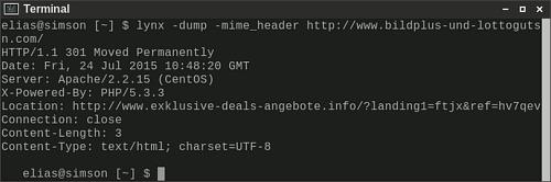 Screenshot eines Terminalfensters, das die Ausgabe von 'lynx -dump -mime_header' zeigt, um den reinen Weiterleitungscharakter zu verdeutlichen