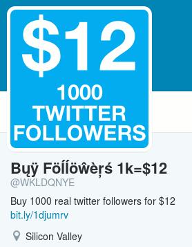 Im Avatar steht: '$12 1000 Twitter Followers' -- Der Name lautet 'Bųÿ Föĺĺöŵèŗś 1k=$12' -- Kurzbiografie: Buy 1000 real twitter followers for $12 -- Der Link ist unnötigerweise über bit.ly gekürzt