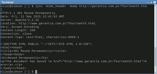 Screenshot meines Terminals mit der Ausgabe von Lynx