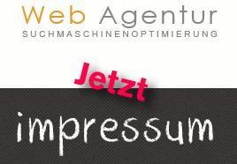 Detail der betrügerischen Website: Das Logo der angeblichen Klitsche namens 'Web Agentur'