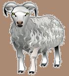 Kontextlos in den Text eingebettetes Clipart eines Schafes, dessen Bedeutung sich vielleicht im Verlaufe des Weiterlesens offenbart