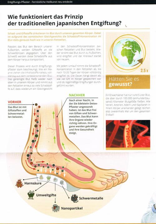 Wie funktioniert das Prinzip der traditionellen japanischen Entgiftung? -- Schad- und Giftstoffe zirkulieren im Blut durch unseren gesamten Körper. Dabei ist aufgrund des osmotischen Gleichgewichts die Schadstoff-Konzentration im Blut stets genauso hoch wie in unseren Fettzellen. -- Passiert das Blut den Bereich unserer Fußsohlen, werden Giftstoffe an die Schweißdrüsen abgegeben. Über den Schweiß werden diese Schadstoffe aus dem Körper heraus transportiert. Dieser Prozess wird durch Entgiftungspflaster stark beschleunigt Wie ein Magnet ziehen die Inhaltsstoffe nahezu vollständig aus dem vorbeiströmenden Blut: Das gereinigte Blut fließt wieder nach oben in unserem Körper und nimmt aus den Fettzellen erneut so viele Schadstoffe auf, dass wiederum ein Gleichgewicht in den Schadstoff-Konzentration zwischen Fettzellen und Blut besteht. Wieder strömt das Blut durch zu Fußsohlen, wird entgiftet und der Kreislauf startet von neuem. Mit jedem Umlauf nimmt die Schadstoff-Konzentration in den Fettzellen ab, bis nach 10-20 Tagen der Körper vollständig entgiftet ist. Die Dauer hängt davon ab, wie viel Gift im Körper gespeichert war und ob regelmäßige Entgiftungen durch geführt wurden. -- VORHER: Das Blut ist mit Giftstoffen und Schwermetallen belastet. -- NACHHER: Nach einer Nacht, in der Sie Edelstein Detox-Pflaster angewandt haben, ist das Blut frei von Giften und Schwermetallen. Das Blut kann Ihre Organe wieder richtig nähren. Ihre Organe werden gekräftigt und Ihre Gesundheit steigt. -- Hätten Sie es gewusst? -- Ein Erwachsener hat nur rund 5 Liter Blut, die aber durch 100.000 (einhunderttausend!) Kilometer Blutgefäße fließen. Alle Venen, Arterien, Adern und Kapillaren in Ihrem Körper aneinander gelegt reichen also zweieinhalb Mal um den gesamten Erdball!