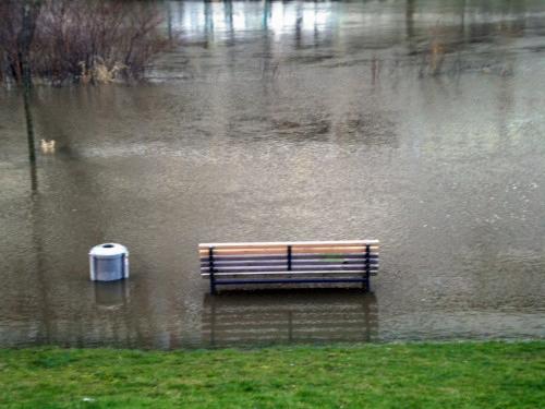 Foto einer Bank, die im Hochwasser der Ihme steht